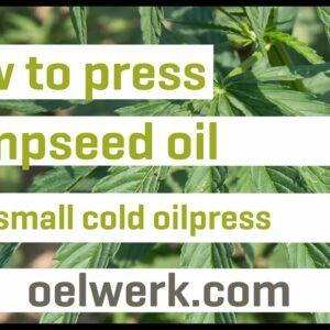 hempseed oil pressing - OW100s-inox
