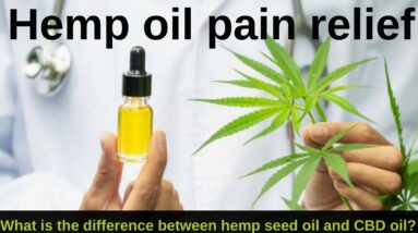 Hemp oil pain relief   What is the difference between hemp seed oil and CBD oil?